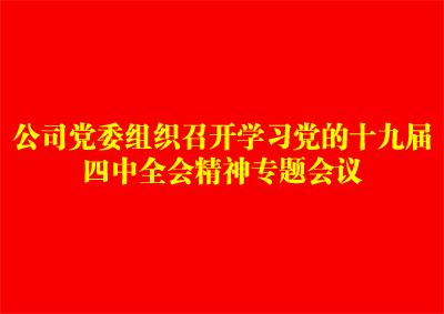 万博manbetx客户端苹果党委组织召开学习党的十九届四中全会精神专题会议